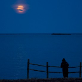 Moon Over Point Michaud w/Silhouette