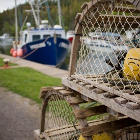 St Peter's Lobster Traps